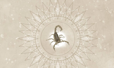 Coperta single Jerry Cantrell Siren Song
