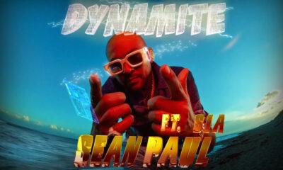 Coperta single Sean Paul Sia Dynamite